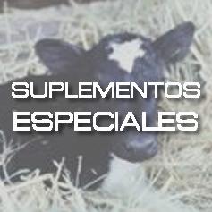 Suplementos Especiales